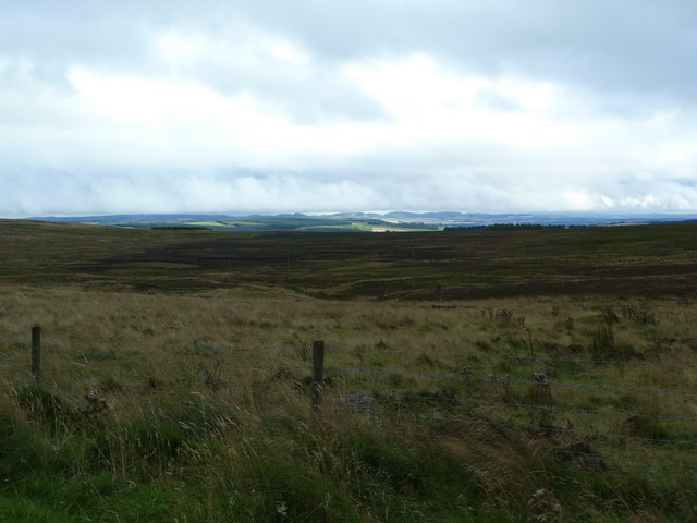 View south towards Blairgowrie