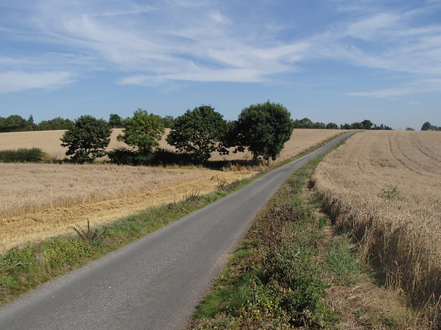 Lane from Beesthorpe Hall