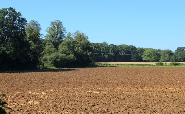 2012 : Ploughed field east of Grittleton
