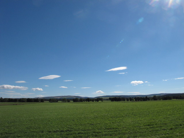 Field East of Miltonduff