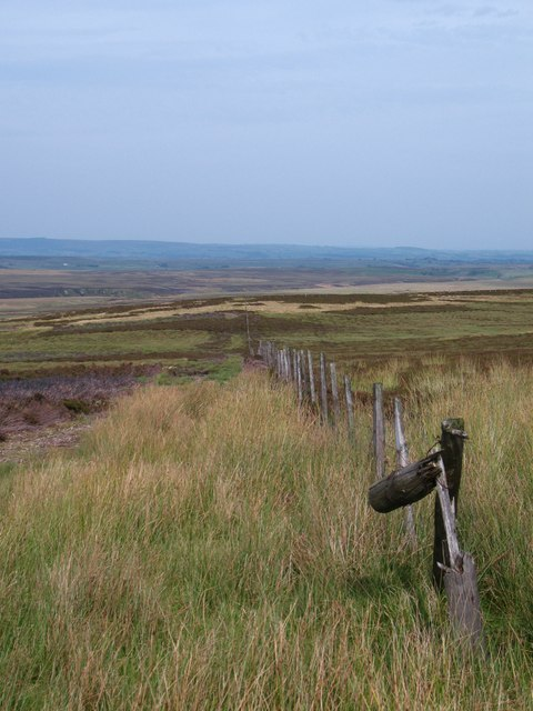 Fence across the moor