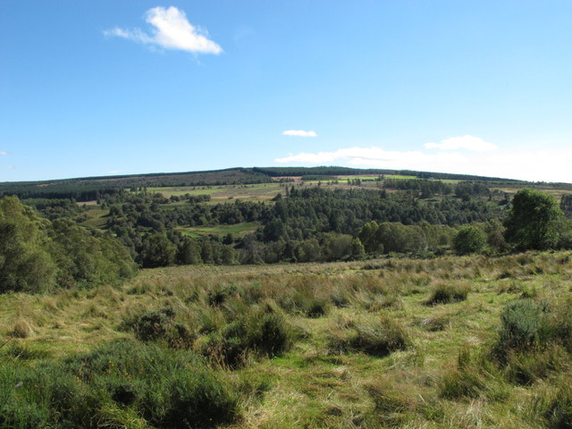 View South from the Road near Heldon Wood