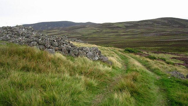 Ruined dyke, Balfentaig