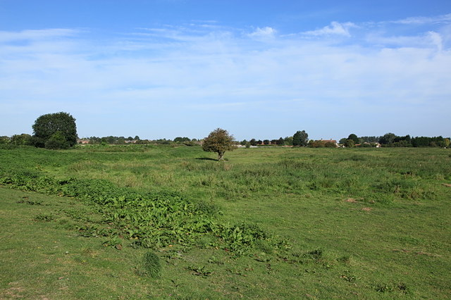 East Fen Common, Soham