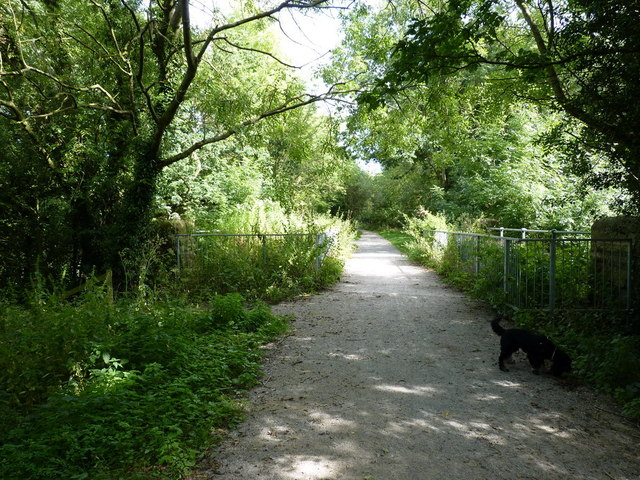 On the old railway, looking towards Gnosall