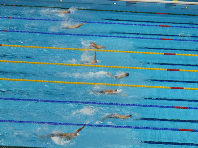 Paralympics swimmers with different backstroke styles