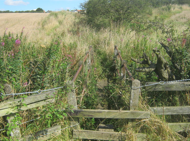 Footbridge for footpath over Gore Burn
