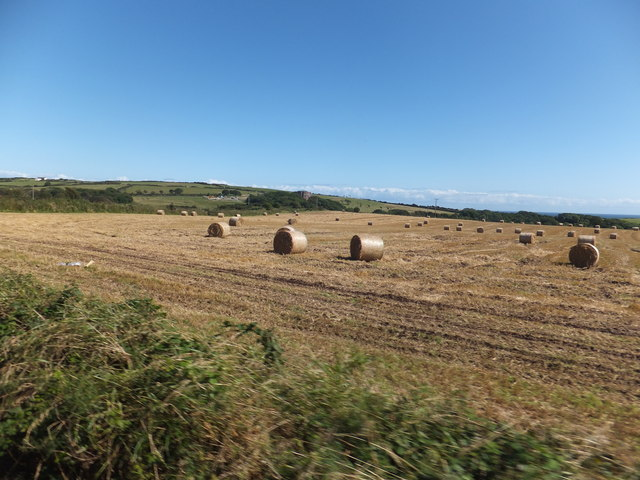Hay bales on a sunny afternoon