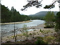 NO1990 : River Dee upstream of  Garbh Allt Shiel footbridge by Alexander P Kapp