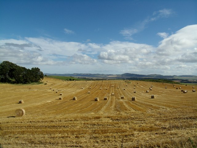 Over Durdie, Carse of Gowrie