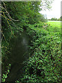 SU0996 : Ampney Brook from the road bridge by Nick Smith