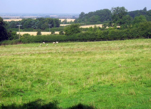 Small fields near Manor Farm