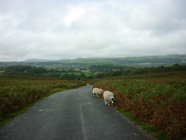 A minor moor road towards Yeat House