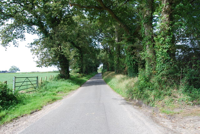 Common Lane (1)