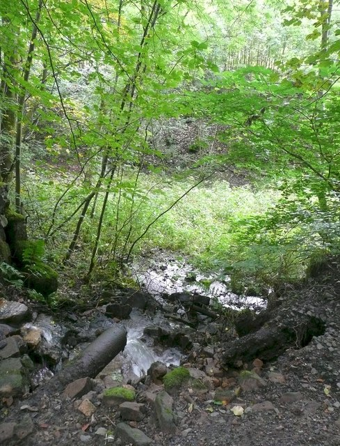 Stream flowing into hollow