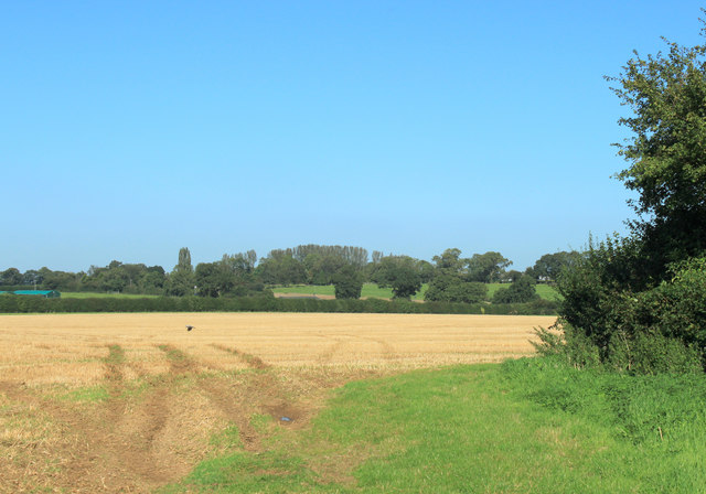 2012 : Harvested field near Lower Stanton St.Quintin