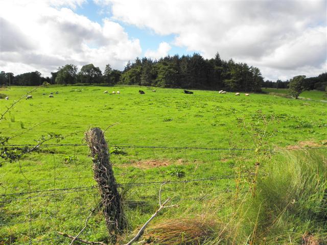 Envagh Townland