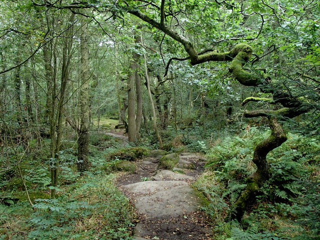Froggatt Wood footpath