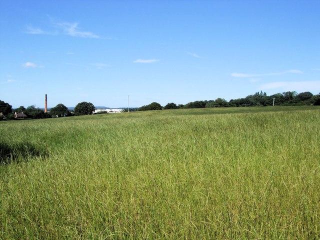 Thakeham Place Farm