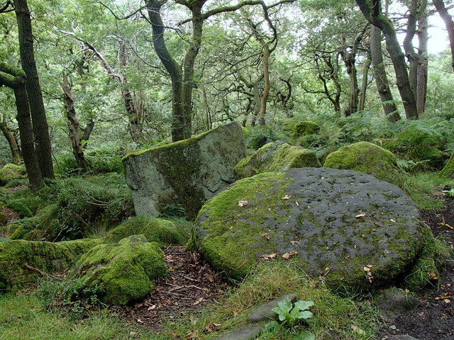 Millstone in woodland by the Padley Gorge footpath