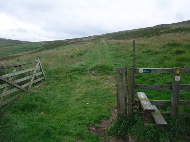 St Cuthbert's Way towards Tom Tallon's Crag