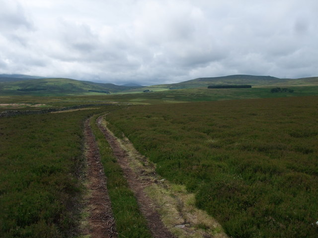 On the western end of Black Law