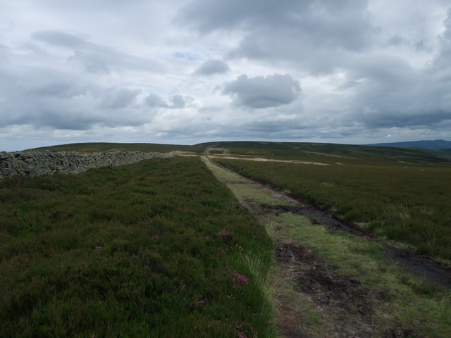 St Cuthbert's Way on Black Law