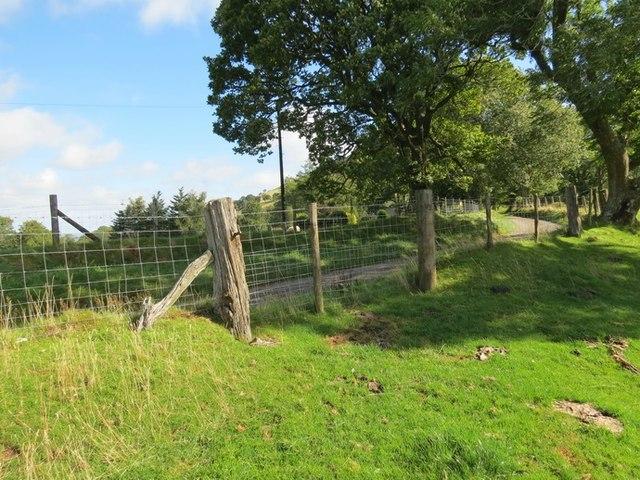 Llwybr wedi ei rwystro / obstructed path (Llangamarch)