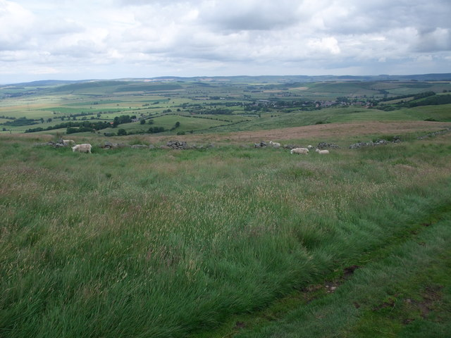 On the flank of Coldberry Hill