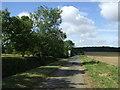 TL1763 : Lane heading west towards Hail Weston by JThomas