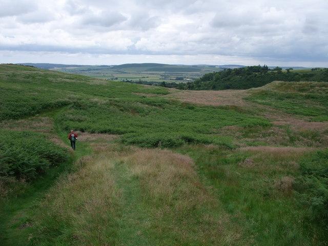 St Cuthbert's Way down to Wooler