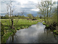 SP2185 : River Blythe, Little Packington, looking south by Robin Stott