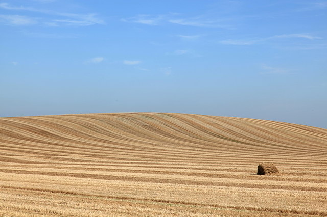 Field of wheat stubble
