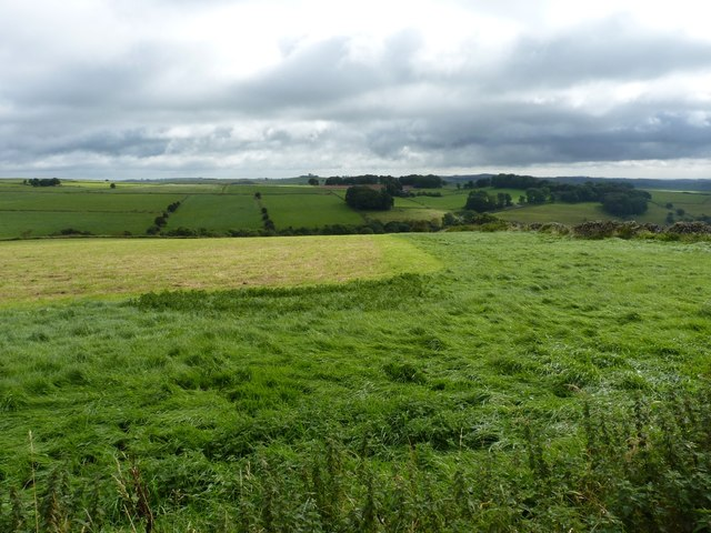 Pasture on Hawks Low Hill