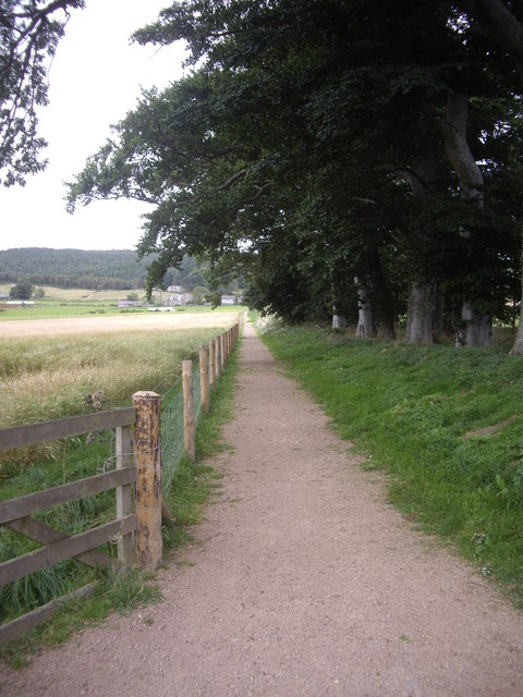 The new cyclepath between Balnaboth and Finzean School