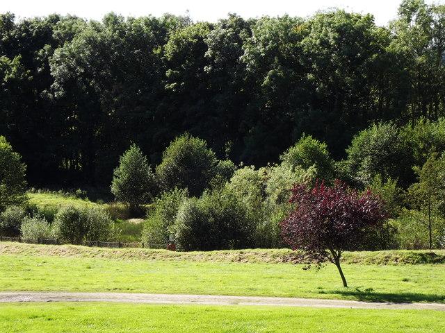 Ardoe House Hotel Grounds
