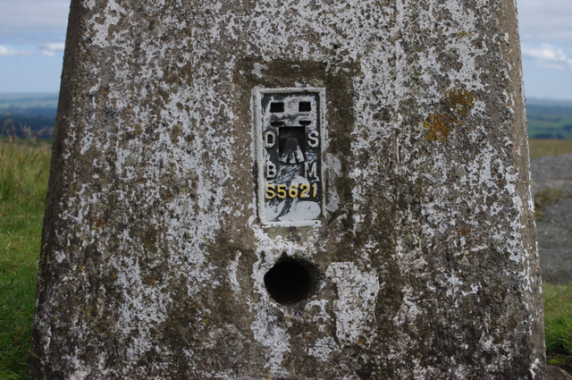 Flush bracket S5621
