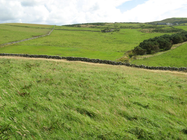 Fields below Killantringan