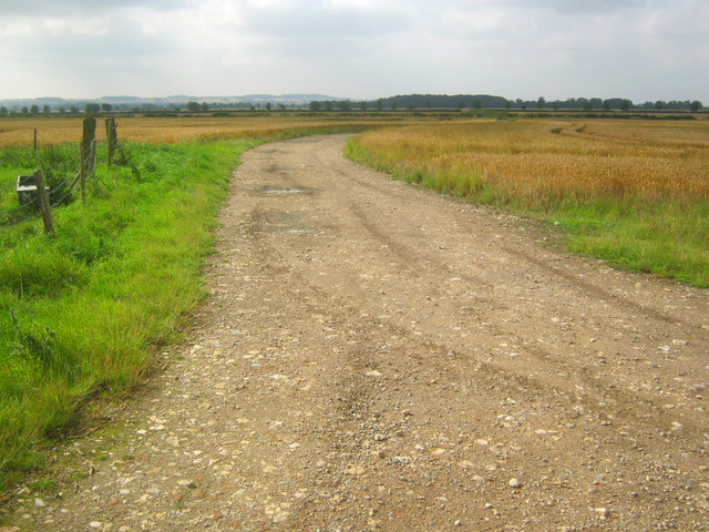 Farm track near Somerton Castle