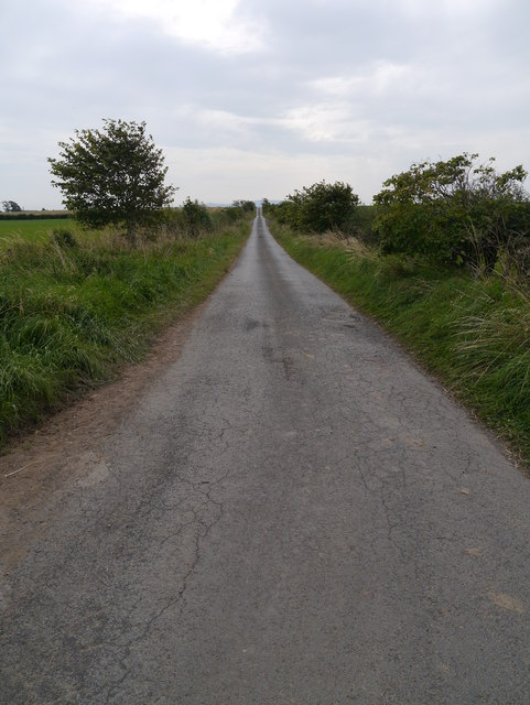 Minor Road Near Whitsome Laws