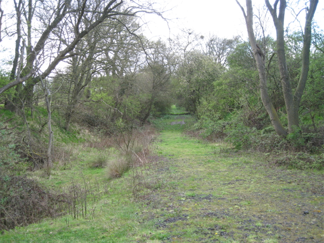 Dismantled railway near Hawkeswell Farm