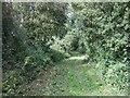 TL0663 : Bridleway near Valbrook Farm by JThomas