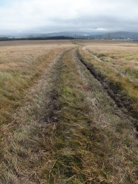 Vehicle track across moorland
