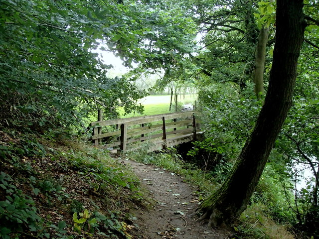 Path and footbridge, west end of Goose Nest Wood
