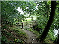 SK2280 : Path and footbridge, west end of Goose Nest Wood by Andrew Hill