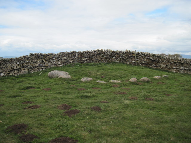 Stone  Circle  split  by  Drystone  Wall