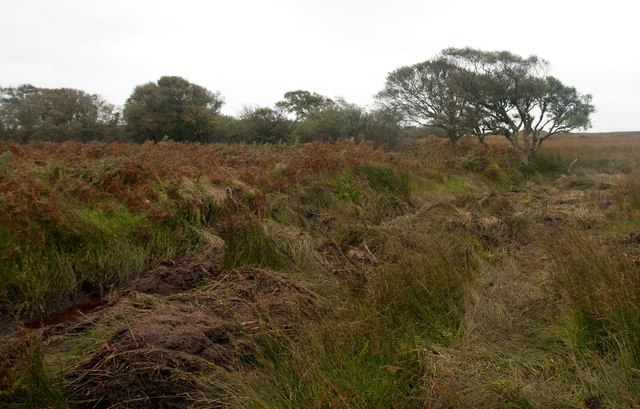 Ditch in moorland east of Kintour, Islay