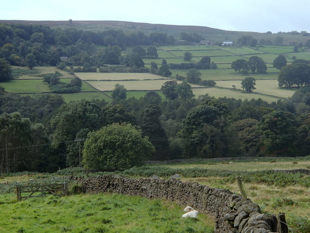 Derwent valley scene below Bole Hill
