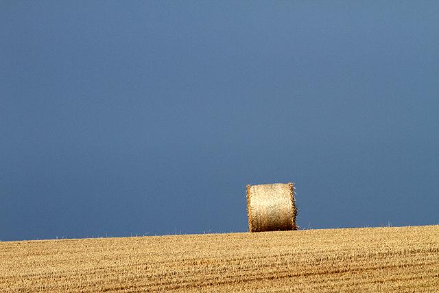 A  minimalist landscape