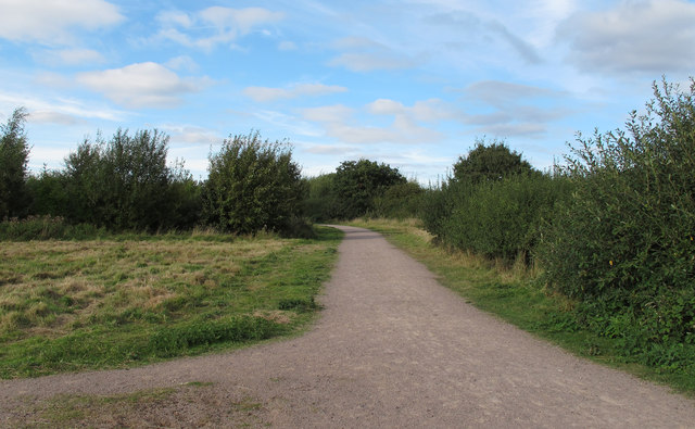 Path at Cely Woods